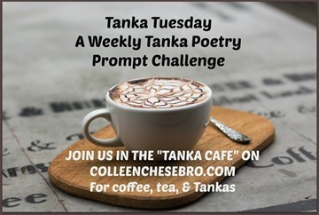 Peace & Spirit – Colleen's Weekly #Tanka #Poetry Prompt Challenge #12