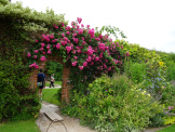 Packwood Gardens – Garden Photography – UrbanSpaces