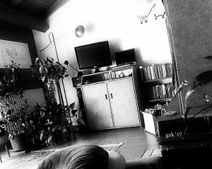living-room_small_2