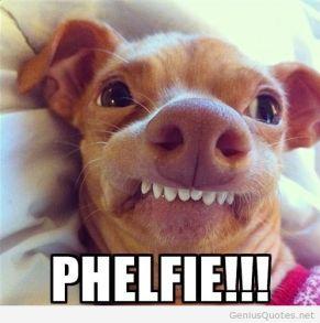 selfie-phelfie