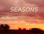 seasonssummerfallwidgetblog2_4269-copy