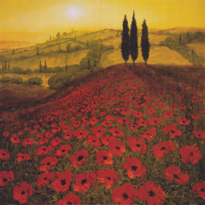 steve-thoms-poppy-field