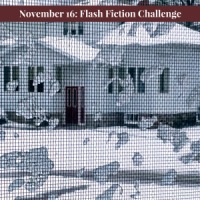 November 16: Flash Fiction Challenge - Mesh in Shadorma