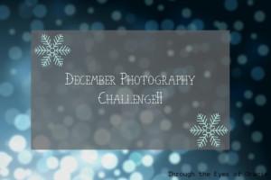 decemberphotpgraphychallenge