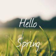 spring-quotes-hello-spring