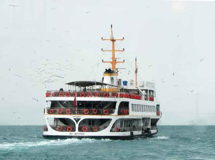 white-ship-traveling-through-vast-body-of-water-with-white-birds-flying-beside-879479-pixel-photo