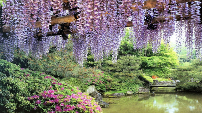 magical-garden