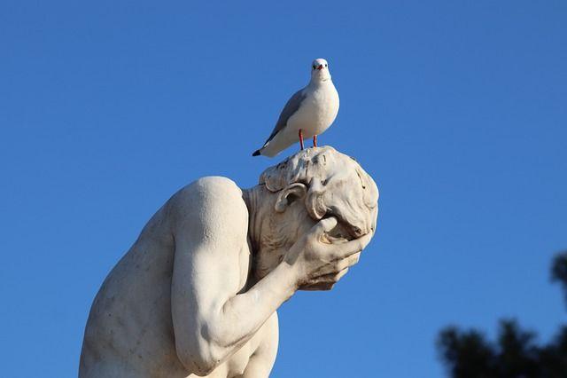 stone-statue-seagull_31